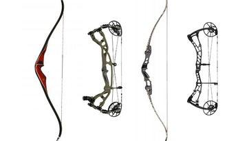 Recurves vs compound bows