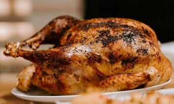 Best Turkey Fryer for Great Tasting Turkeys