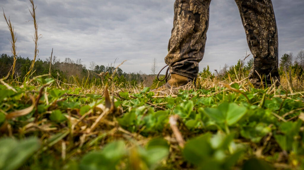 Hunting land can be overpriced, or a wise investment.