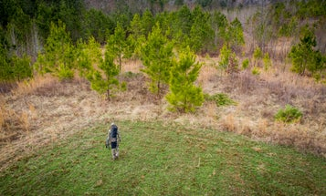 The Best (and Worst) States for Buying Cheap Hunting Land