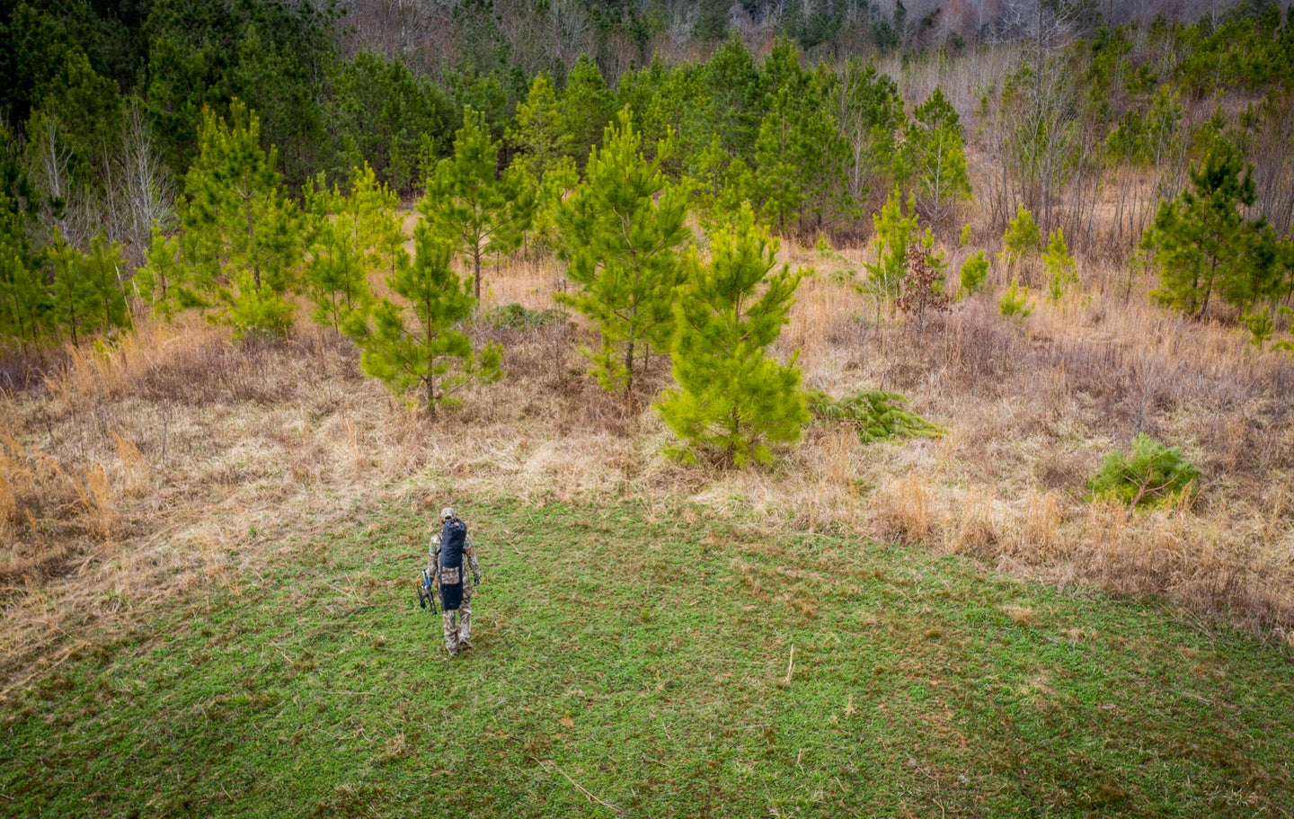 Looking for hunting land? Pick a property that's worth the investment.