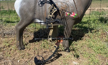 How To Shoot a Compound Bow: Shot Execution Tips and Drills