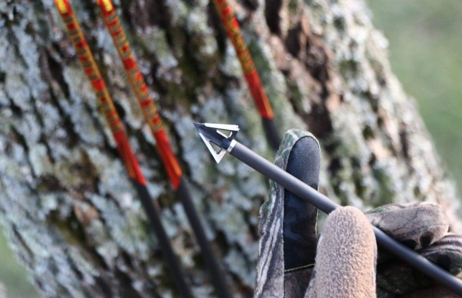 tooth of arrow broadhead