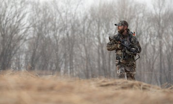 The Best Crossbows for the Money