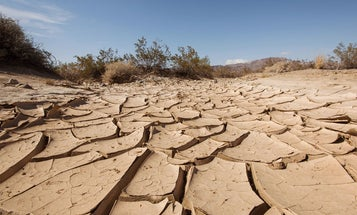 """Fishing Closures, Wildfire Prevention, and """"Rattlesnakes Everywhere"""":  Drought is Taking a Toll on Wildlife and Outdoor Recreation in the West"""