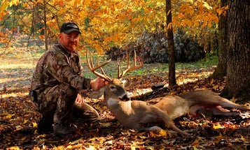 How to Beat the Crowds in the Public-Land Whitetail Woods