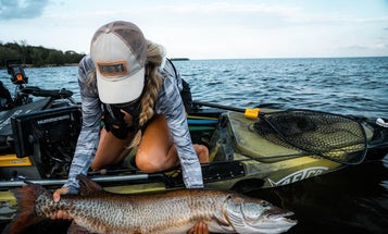 If You Know When to Use Big Baits for Muskie, You Can Land a Giant