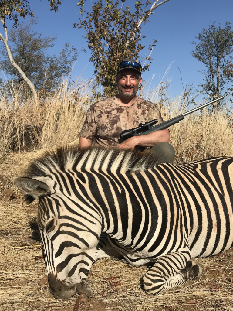 Zebra with Nosler 21 in .375 H&H