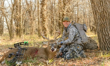 How to Set Up the Ultimate Whitetail Compound Bow