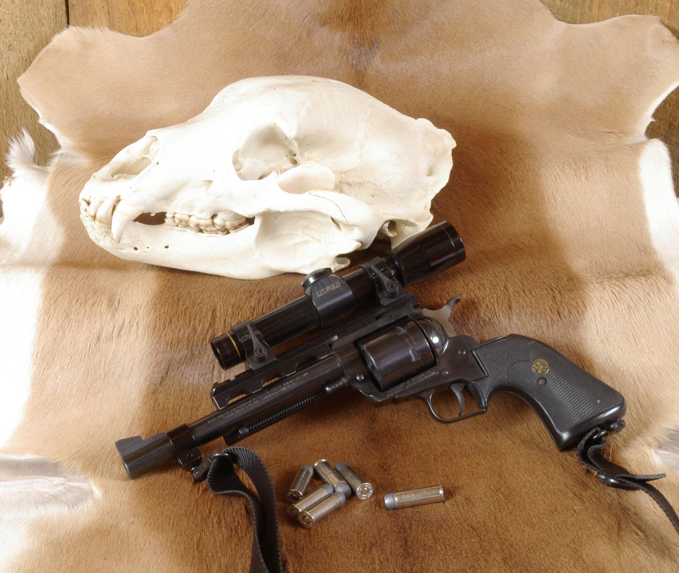 Ruger Super Blackhawk .44 Magnum is our pick for best revolver.