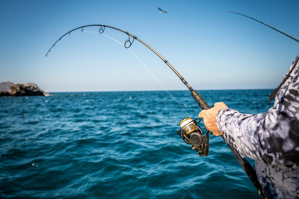Fighting a fish on a spinning reel