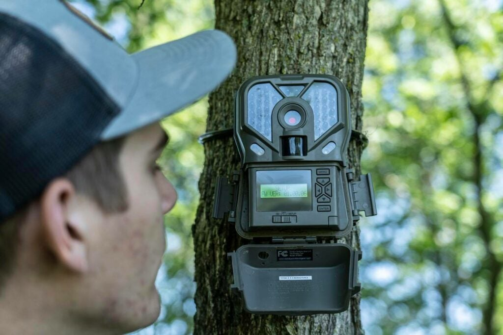 Where to mount a trail camera is on a tree