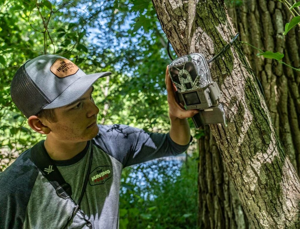Checking where to mount a trail camera