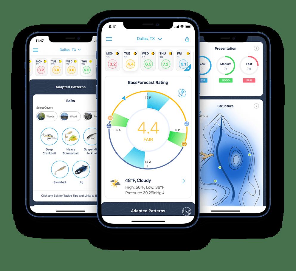 Bassforecast app ICAST 2021
