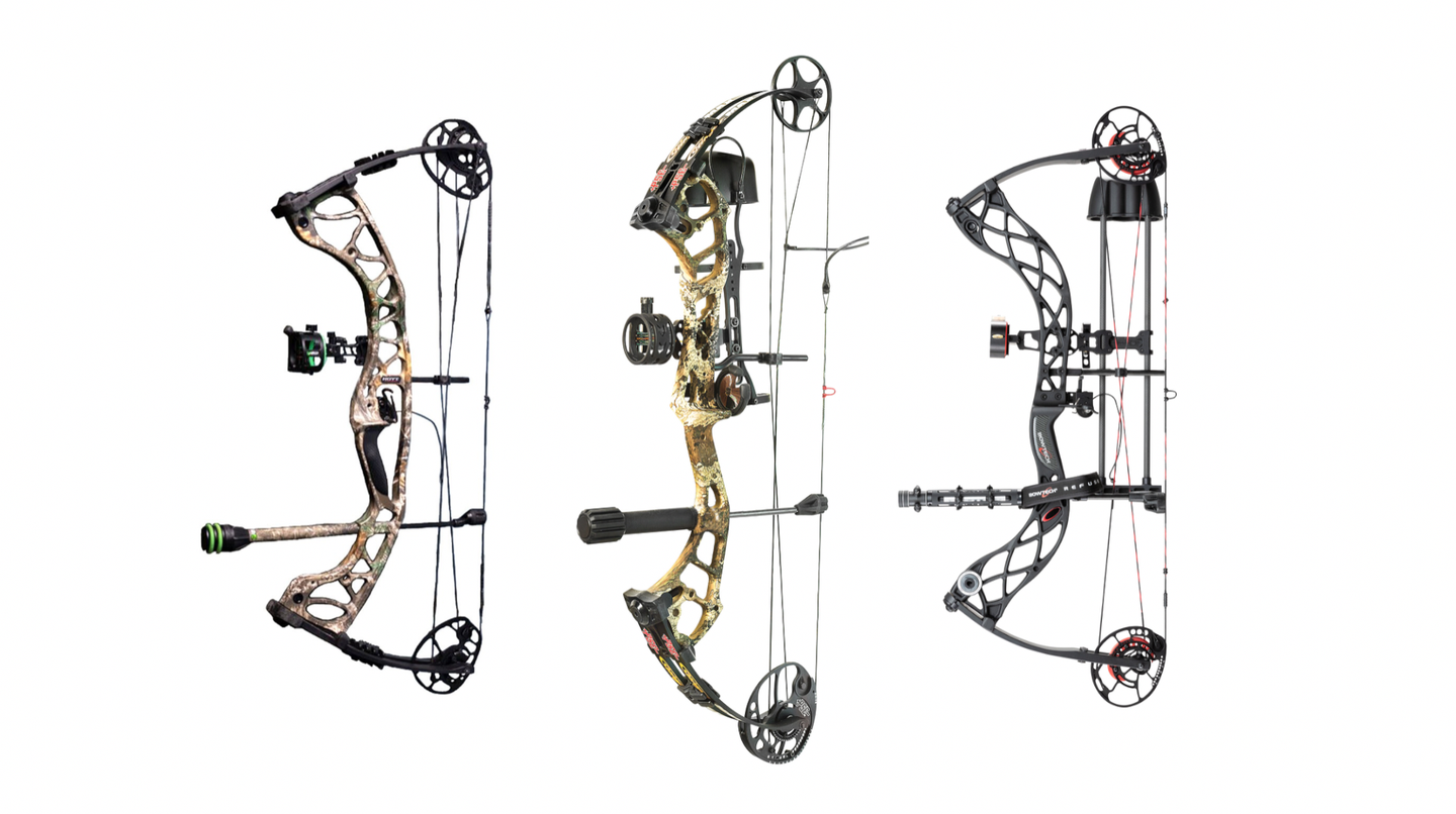 Best bows for the money