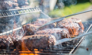Best Gas Grills For Outdoor Barbecues