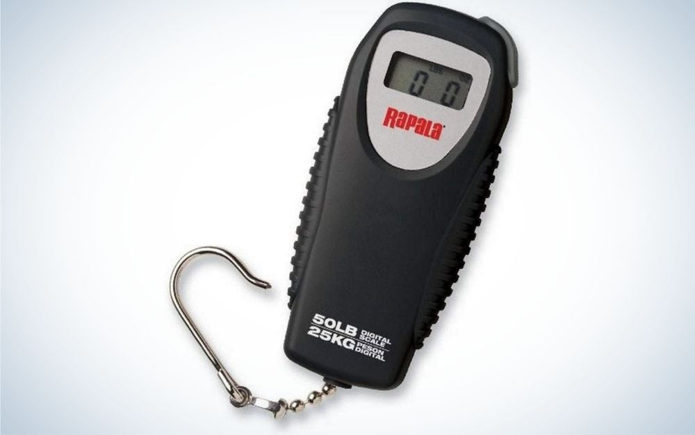 A black digital scale with numbers in the middle and a red and gray field, as well as an aluminum hook pendant.