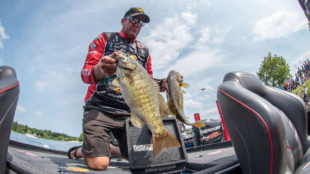 An aerated livewell will help keep bass healthy.