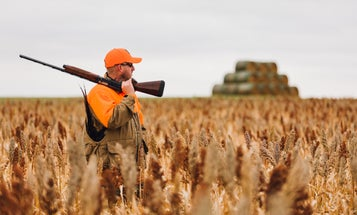 The 16-Gauge Is Most Versatile Shotgun. But Why Didn't It Take Off?
