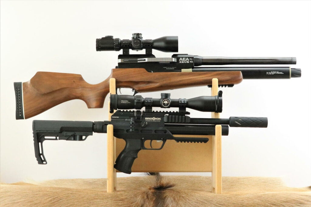 The Best Air Rifles for Hunting