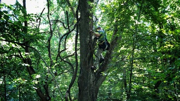 A treestand fall is absolutely preventable with the appropriate safety precautions.