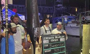 Jersey Angler Breaks Maryland's 2-Week-Old Swordfish Record
