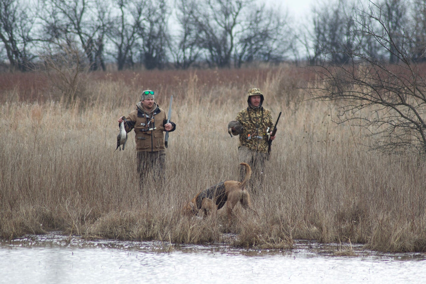 Duck hunters and duck stamp numbers don't add up.