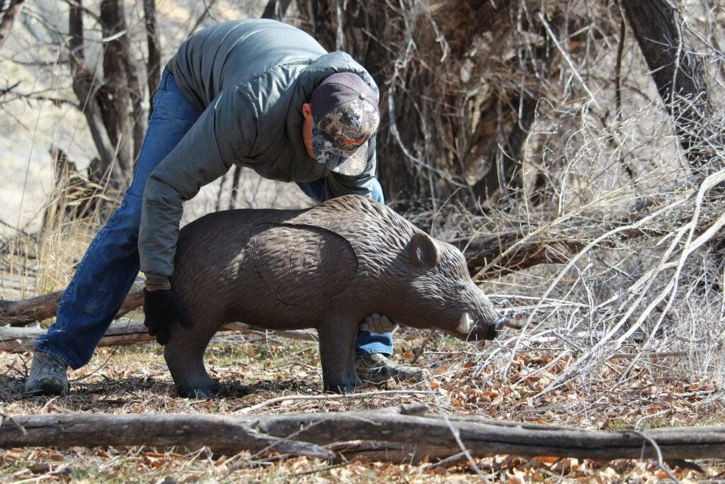 Set up 3-D targets to become a better elk shot.
