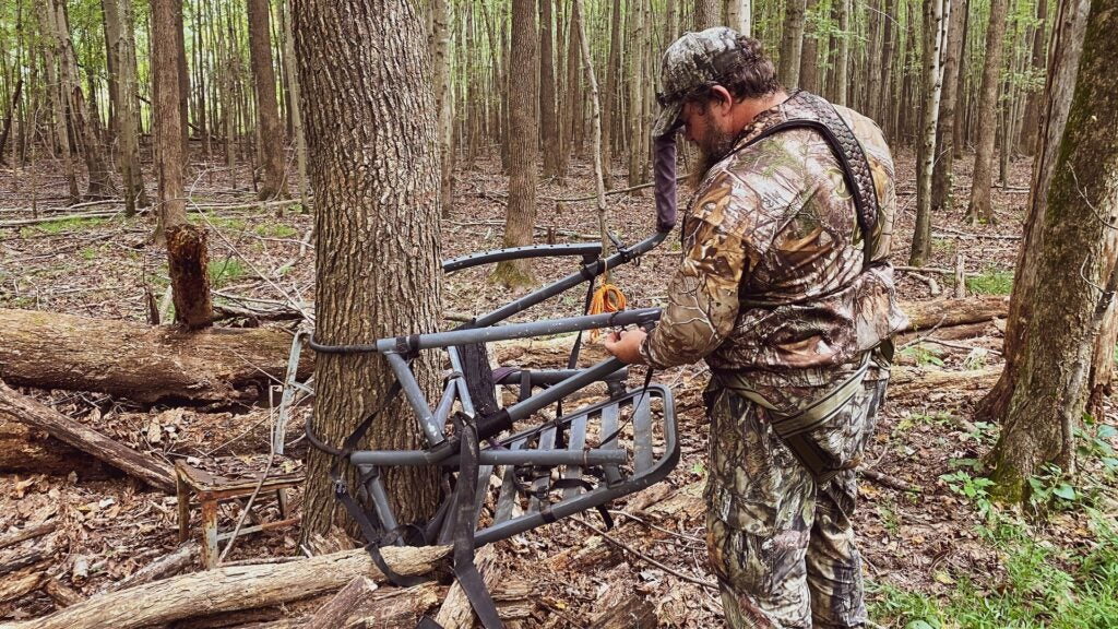 Set your stand where the deer want to be.