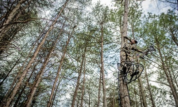 How to Set Treestands in the Best Locations For Bowhunting Season