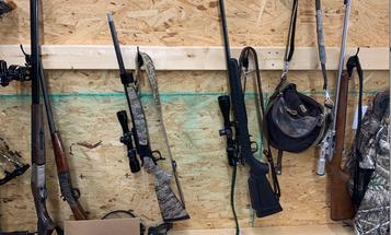 Squirrel Hunting Firearm Showdown: Shotguns vs. Rimfire Rifles