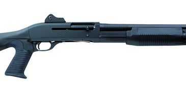 You won't find many components to a field stripped Benelli.