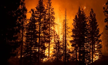 All California National Forests Closed Due To Wildfires