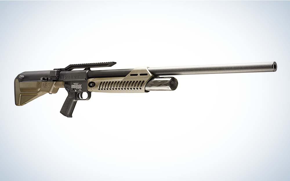 A black and gold Umarex Hammer air rifle
