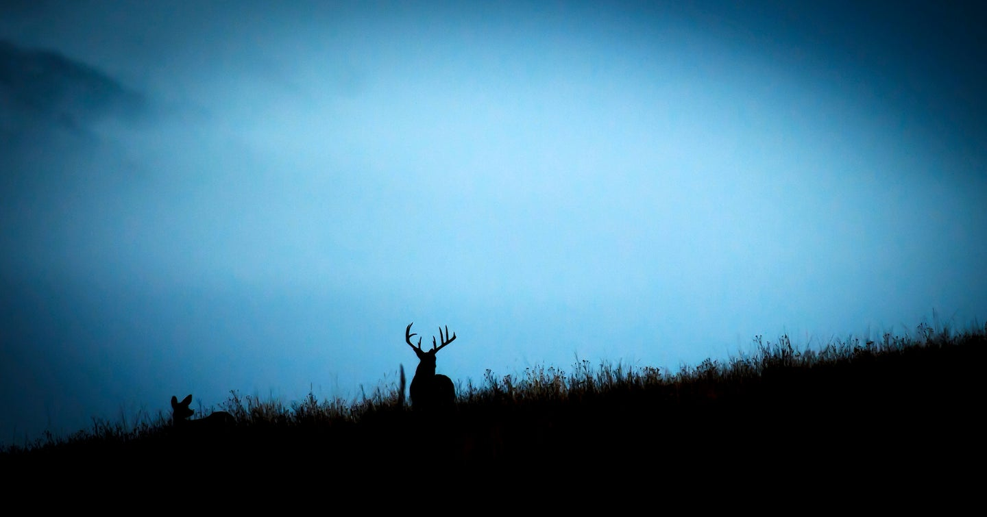 whitetail rut moon phases