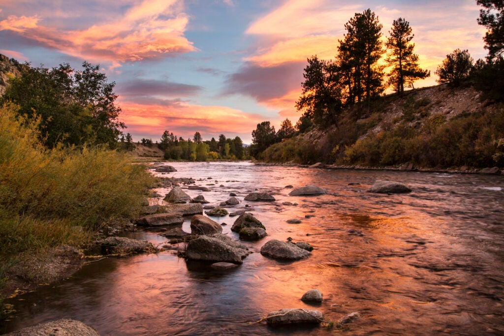 Trout and other native fish are in trouble from high temps, and river closures are one way to help.