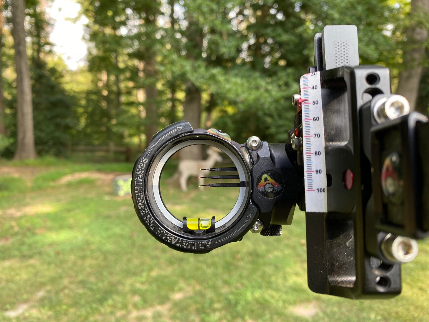 A target pictured through a sight