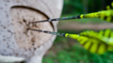 Two arrows in the center of a deer target