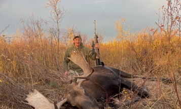The Best Moose Hunting Rifle? Sometimes It's a Beater, Ruger M77 Guide Gun