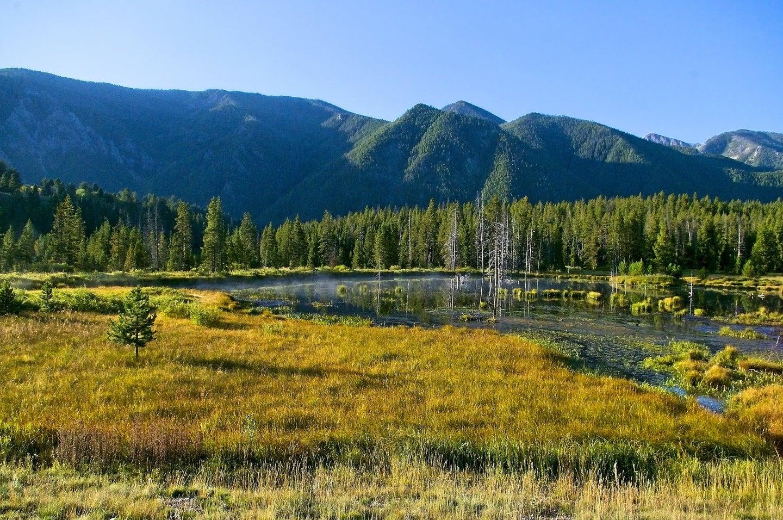montana public lands