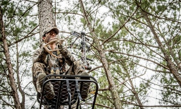 3 of the Best Midwestern States for Hunting OTC Whitetails This Season