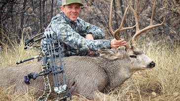 The author shot this mule deer from a treestand.