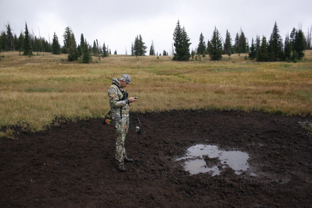 Find a wallow to target elk.