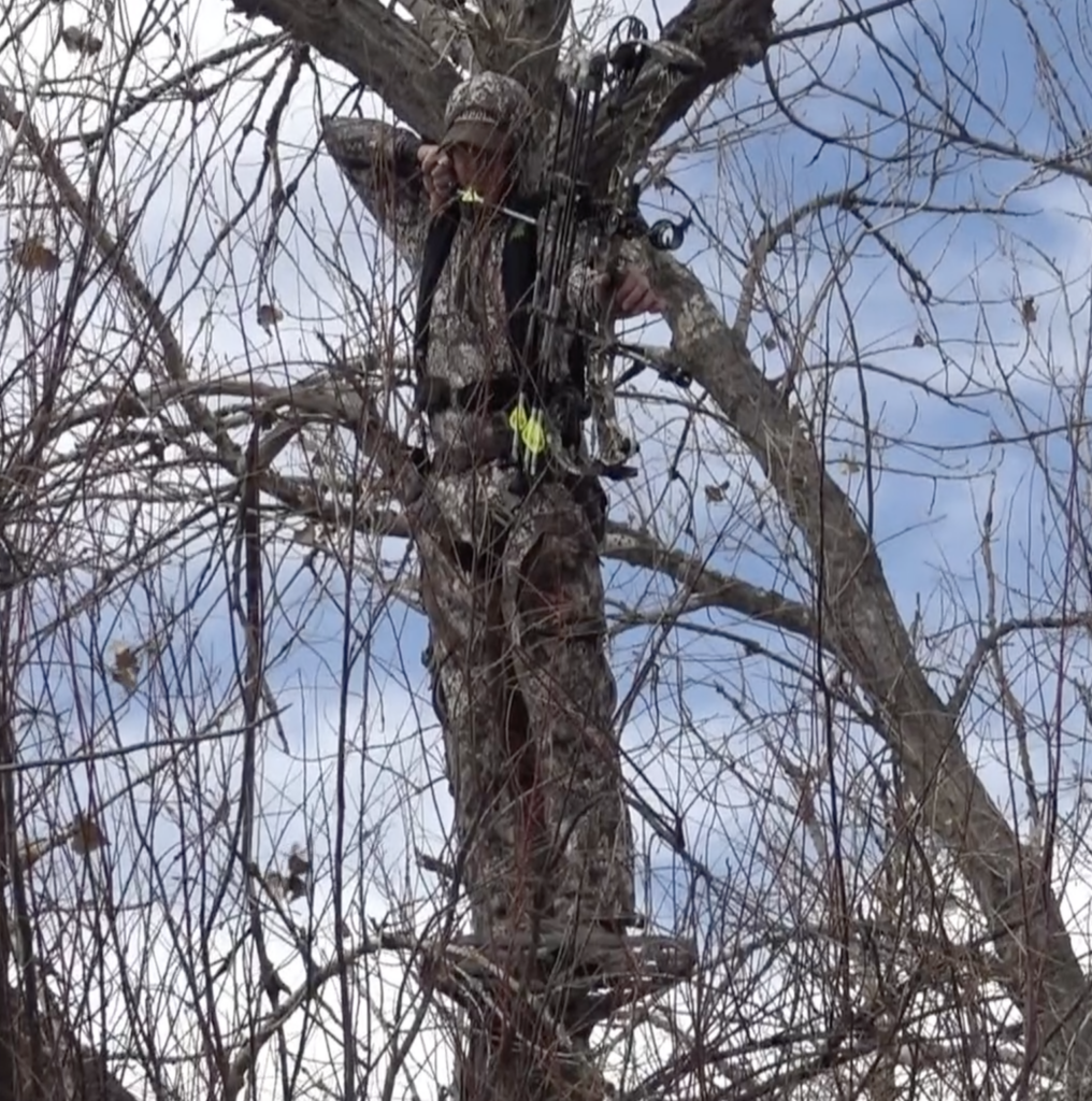 You can hunt western big game from a treestand.