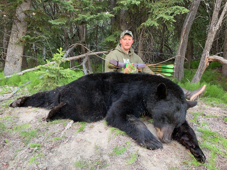 bowhunter on a black bear hunt