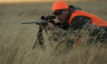 Best Rifle Bipods for Shooters and Hunters
