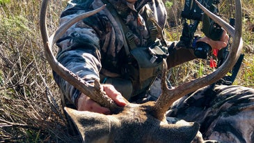 Sometimes you just have to make a move on a western buck.