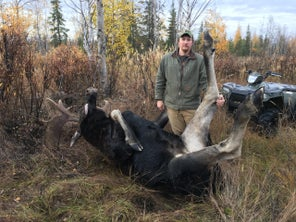 The Most Efficient Way to Pack Out a Bull Moose